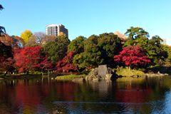 koishikawa_park_01