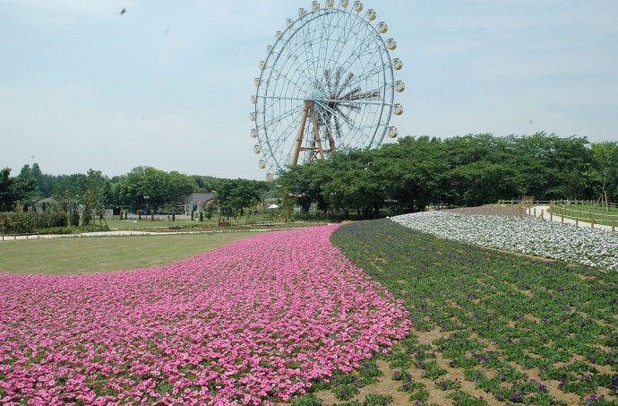 20160526-00010001-saitama-000-view