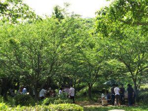 金沢自然公園BBQ