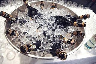 champagne-438448_640