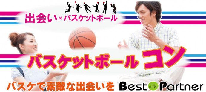 allバスケコンバナー