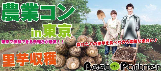 東京農業コン