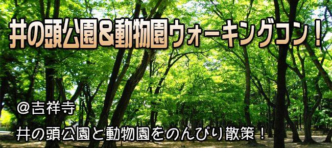 井の頭公園&動物園コン!