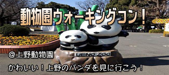上野動物園ウォーキング