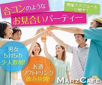 s-MC_banner_336280